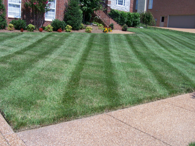 Weekly residential lawn and yard mowing service fairfax for How much to build a house in northern virginia
