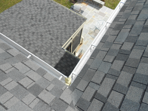 Home And Commercial Gutter Cleaning Service In Fairfax County